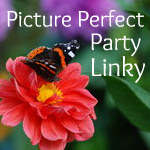 Picture Perfect Party Linky