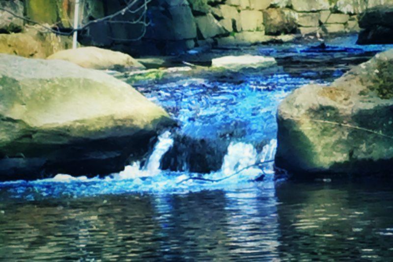 always upstream, oy vey